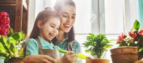 ¿Quieres sembrar en casa pero no tienes espacio? Aprende cómo