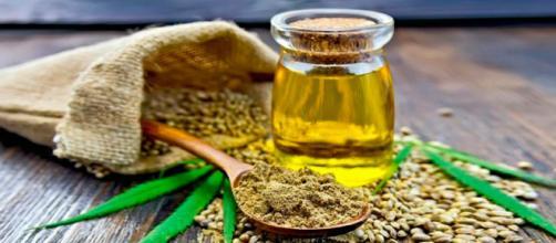 Aceite de cannabis, la nueva tendencia en salud y belleza