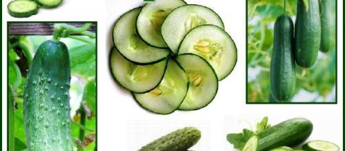 Conoce los beneficios del pepino para la salud y el sobrepeso