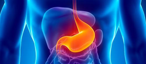 Cuidar nuestra alimentación, favorecerá enormemente a nuestro aparato digestivo