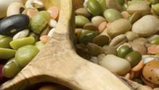 Método de cultivo de frijoles en invernaderos