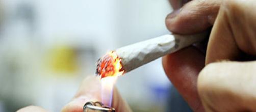 Marijuana Light, aumenta consumo in italia: pro e contro