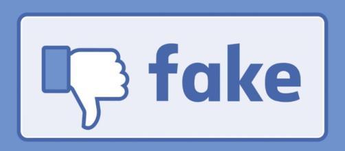 I consigli di Facebook sulle fake news: perché sono inutili e ... - valigiablu.it