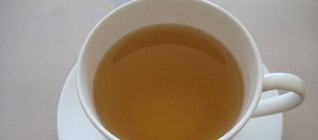 Cuál es el mejor té para bajar de peso? :: Té para adelgazar: las ... - innatia.com