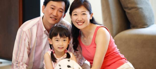 Familia reglamentaria china, antes del 2015