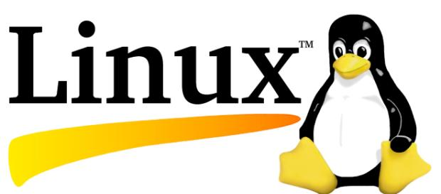 Linux sigue avanzando e innovando.