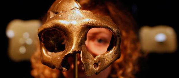 Os Neandertais | VEJA.com - com.br
