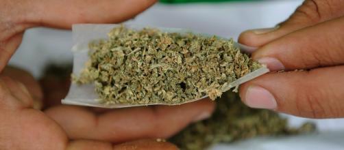 El genió publicó un post sobre la marihuana