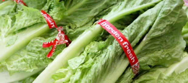 Officials issue warning about eating romaine lettuce amid E. coli ... - cbsnews.com