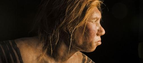 Hace aproximadamente 65,000 años, un gran carnívoro, tal vez una hiena de cueva, mordió la cara de un (probablemente muerto) Neanderthal.
