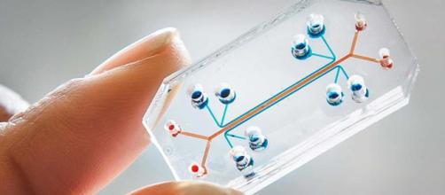 Inteligencia Artificial en un microchip