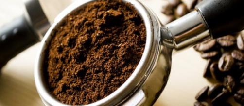 Combustible con restos de café es una realidad