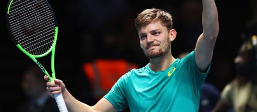 David Goffin: Belgian brilliance - Hopman Cup - hopmancup.com