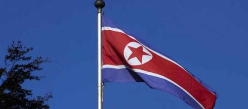 Koreas to march under unified flag at Winter Olympics | (Image via Zee News)