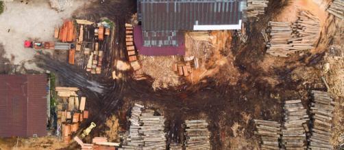 Taller de transformación de madera para su posterior comercialización. Foto: EIA.