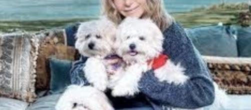 Barbra Streisand hizo clonar a su amada mascota, Samantha - dailymail.co.uk