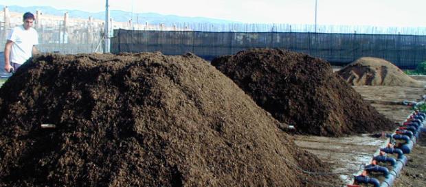 ¿Cuánto desperdicio de animales puede dañar el medio ambiente?.
