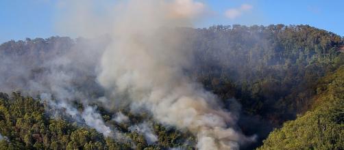 Más vale refrán en mano: Por el humo se sabe dónde está el fuego - blogspot.com