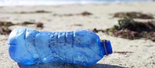 NABU, producción de plásticos debe reducir para combatir desechos ... - plastico.com
