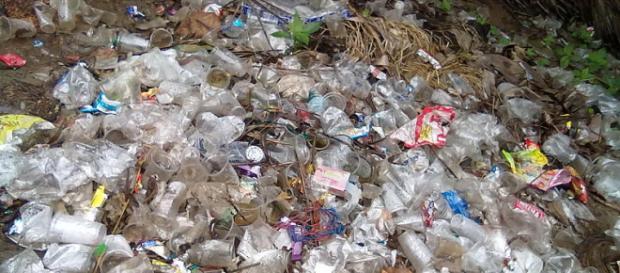 Types of plastic waste (Image credit – Venkat2336, Wikimedia Commons)
