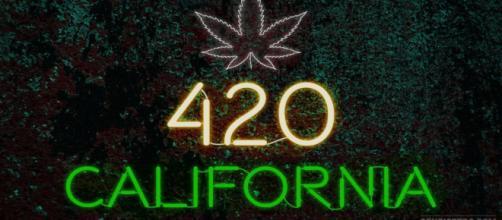 California: cómo funciona el mercado de cannabis más grande - sensiseeds.com