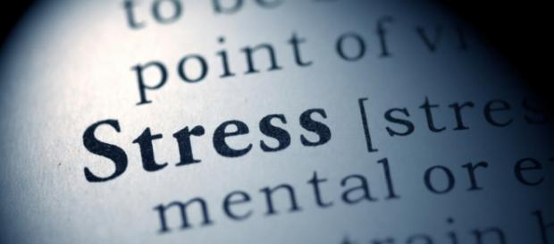 Deshalb solltest du Stress vermeiden. - flux-fit.com