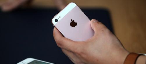 Apple lanza un nuevo iPhone con pantalla más pequeña y más barato ... - com.ni
