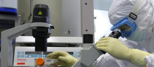 Disease X potrebbe generare un'epidemia globale