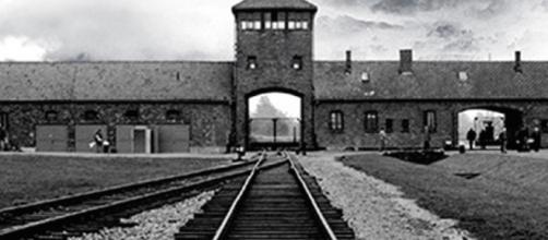 La lógica del campo de concentración - elviejotopo.com