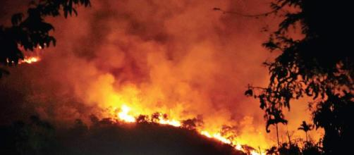 Ten trekkers killed, 27 rescued after huge forest fire : (Image Credit: NDTV/Youtube screencap)