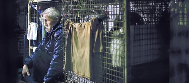 en jaulas, el drama de miles de chinos pobres en Hong Kong - clarin.com