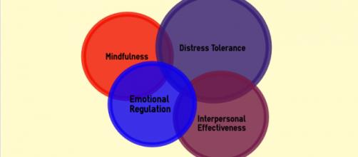 Dialectical behavior therapy has four key skills. (infographic by Danielle Lilly - Own work)