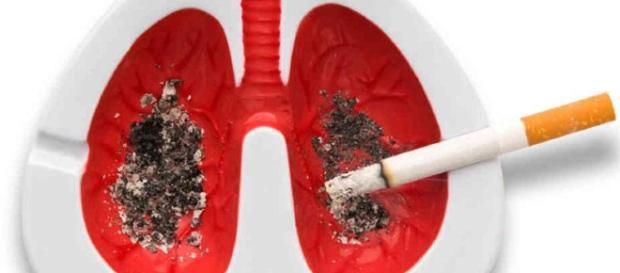 CNPT - Comité Nacional para la Prevención del Tabaquismo - cnpt.es