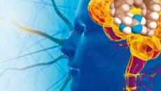 Después de la muerte, donación de cerebro a la ciencia para crear medicamentos