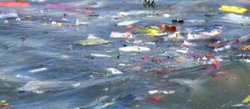 La Alianza Verde, un grupo parlamentario, dijo que los plásticos desempeñaban un papel valioso y no podían ser simplemente abolidos