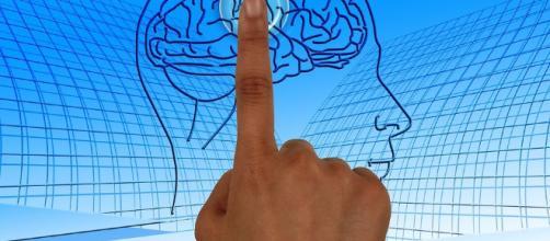 Nectcome, arriva la startup che si impegna a conservare il nostro cervello