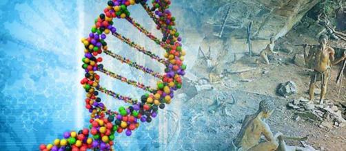 Nuevo estudio de ADN sugiere que el ser humano procedente de ... - ancient-origins.es