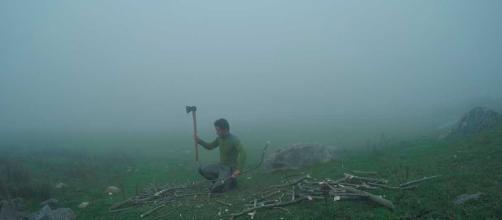 100 días de soledad   Terra.org - Ecología práctica - terra.org