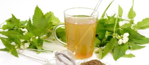 El jugo de abedul tiene muchos nutrientes.