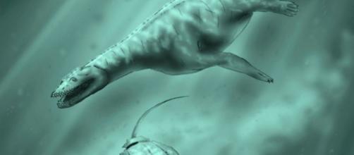 Fósiles que demuestran la vida de los anfibios hace 15 millones de años