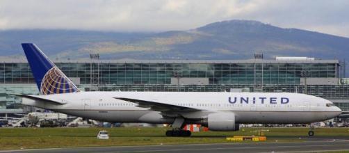 United Airlines tiene 3 incidentes con mascotas