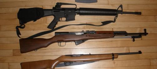 Most popular guns - DPMS AR-15, SKS type 56, Ruger 10/22. - [Image credit – BigBattles, Wikimedia Commons]
