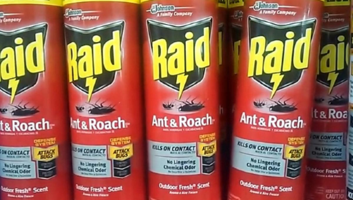 5-kinds-of-raid-bug-killer-ian-torres-yo