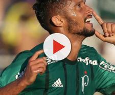 Gustavo Scarpa, meio campo do Palmeiras