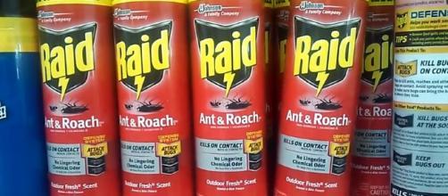 5 kinds of Raid bug killer-Ian Torres YouTube Caption