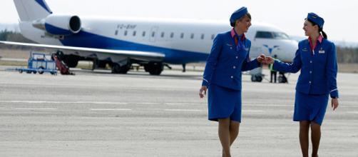 Confesiones de una azafata: 11 datos insólitos de los vuelos que ... - sputniknews.com