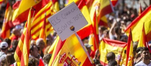 """Grupos ecologistas reclaman y critican """"el desprecio"""" y """"racismo zoológico"""""""
