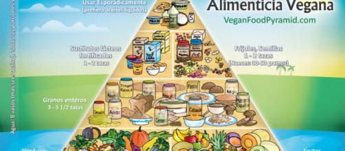 Pirámide alimenticia de la dieta vegana. - marchasyrutas.es