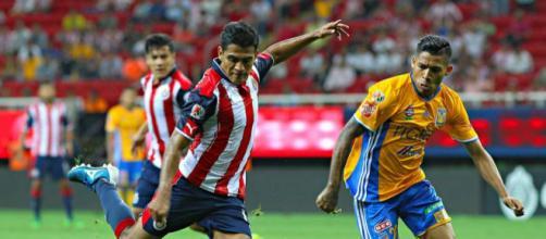Tigres y Chivas se enfrentan por liga mx