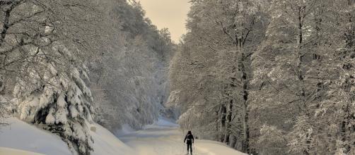 Vuelve la nieve para despedirse el invierno